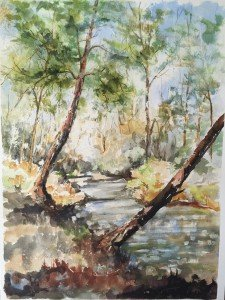 Ron-Affee-Painting-Drawing-Classes-In-Inverness-and-Citrus-Hills - 2 of 91