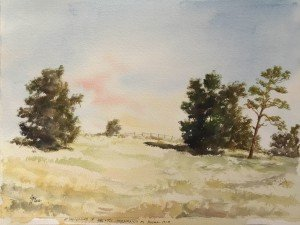 Plein-Air Ron Affee Art Painting Drawing Classes In Inverness, Citrus Hills, Hernando, Ocala