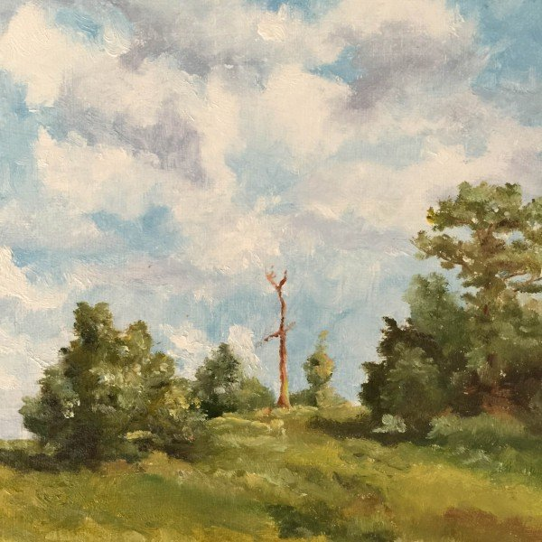 Ron-Affee-Painting-Drawing-Classes-In-Inverness-and-Citrus-Hills – 52 of 91